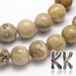 Přírodní zkamenělý korál - ∅ 8 mm - kulička