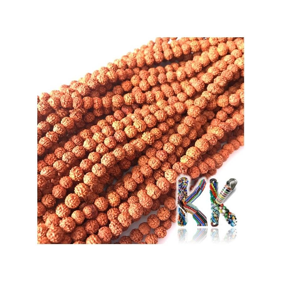 Rudraksha korálky - ∅ 6 mm