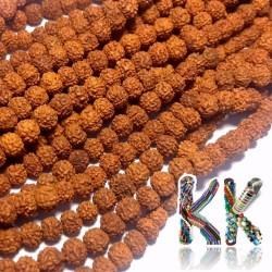 Rudraksha korálky - ∅ 4 mm
