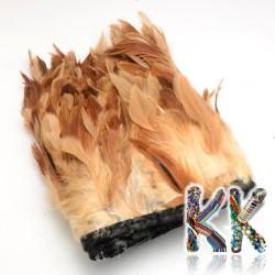 Barvené kohoutí peří - 110-300 x 28-62 mm