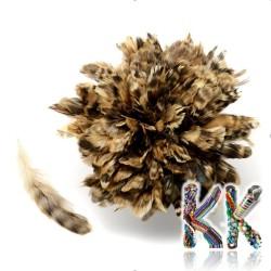 Přírodní bažantí peří - 120-160 x 10-21 mm